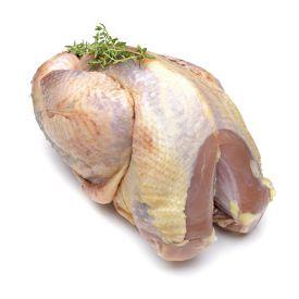 Wilde fazant op karkas of in filet